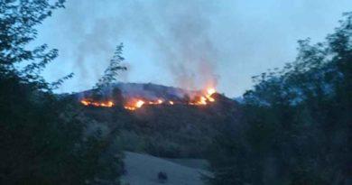 Brucia un altro bosco, questa volta a Morignano / Video